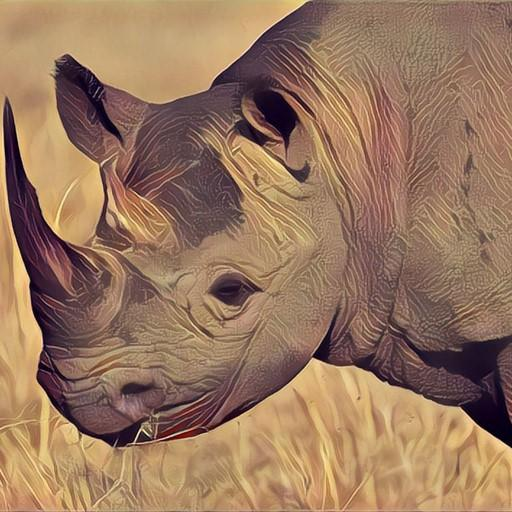 Deadly Desert Rhino Simulator